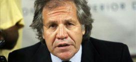 Venezuela ejercerá acciones judiciales contra Luis Almagro