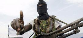 Boko Haram promete establecer califato en África