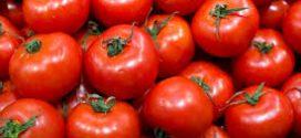 #SALUD Tomates ayudan contra el cáncer de colón