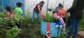 Técnicos en agricultura del Inces se despliegan en centros educativos de la entidad